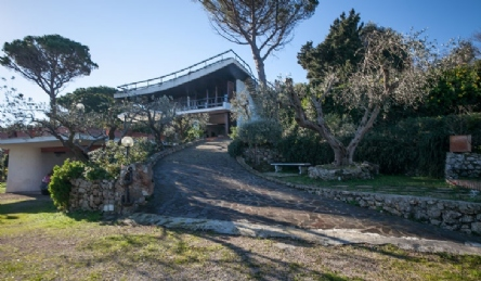 luxury villa for rent on the sea of ​​Tuscany: Outside view