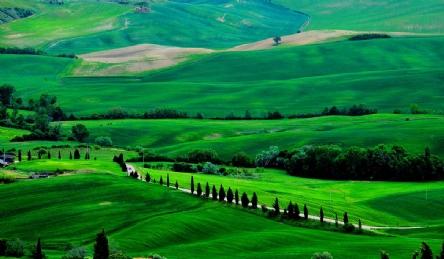 Castello con azienda vitivinicola: Vista esterna