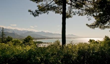 Villa panoramica vicino a Montemarcello: Vista esterna