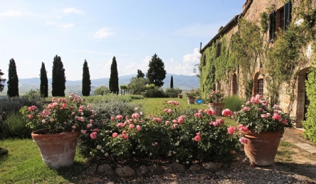 Magnificent villa in the Tuscan countryside: Outside view