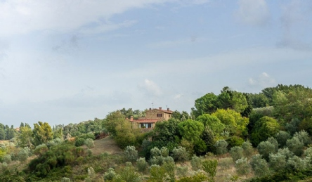 Farmhouse for sale near Pisa: Outside view