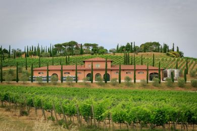 Spectacular winery with panoramic view and heliport: Outside view