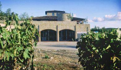 Великолепная винодельня в Кьянти Классико: бассейн