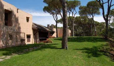 Magnificent luxury villa with pool for sale in Roccamare pine forest: Outside view