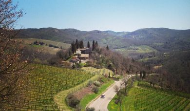 Wine estate for sale in Chianti with pool and vineyards: Outside view