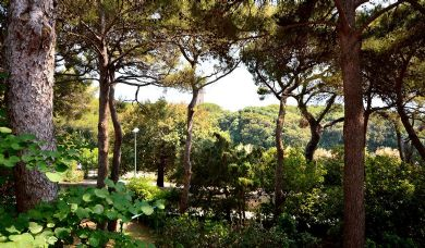 Villa panoramica sul mare di Castiglioncello: Posto auto