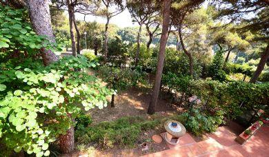 Panoramic villa for sale on the sea of Castiglioncello: Parking