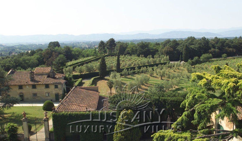Dimora storica con vigneto ed oliveto: Vista esterna