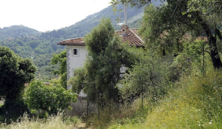 Historic villa in the hills of Camaiore: Outside view