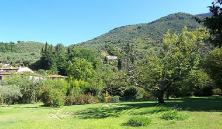 Villa Camaiore: Planimetria