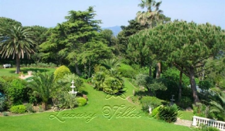 Luxury villa in Cote d'Azur: Outside view