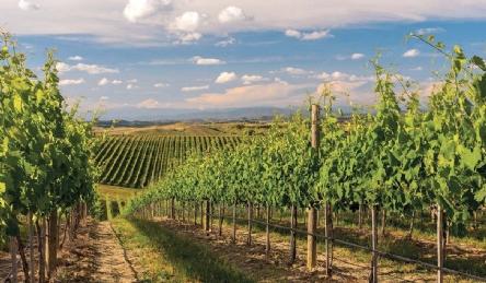 Историческая вилла недалеко от Сиены и Сан-Джиминьяно: Наружный вид