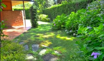 Современная вилла с бассейном: Наружный вид
