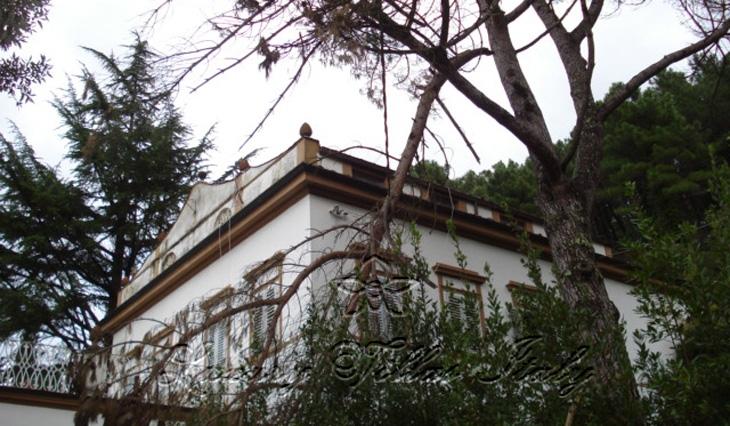 Villa storica panoramica a Lucca: Vista esterna