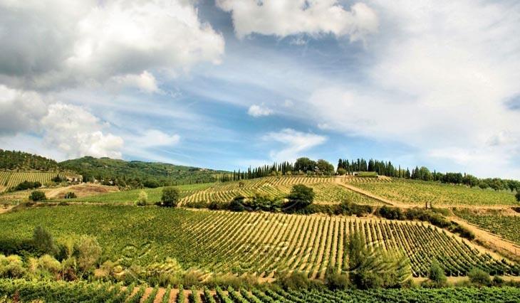 Dimora storica con vigna a Firenze: Vista esterna