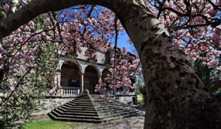 Historic Venetian villa for sale: Outside view